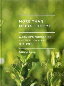 More Than Meets the Eye – by Stella Barber